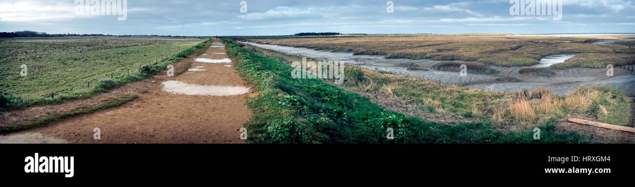 thornham marshes north  norfolk england Stock Photo
