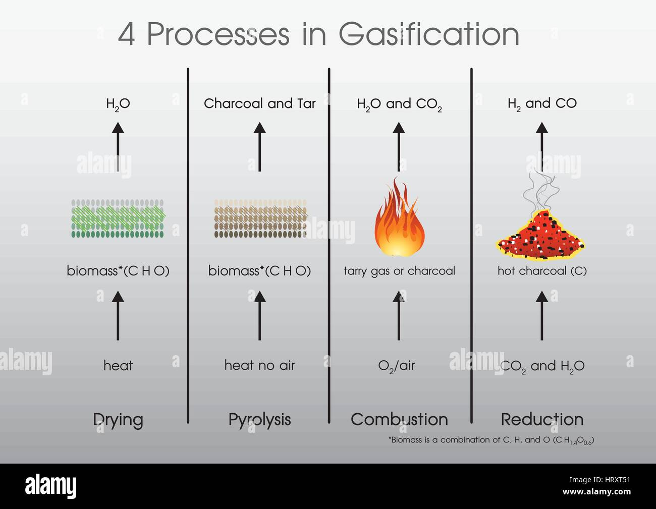 4 processes in Gasification Drying, Pyrolysis, Combustion, Reduction. - Stock Image