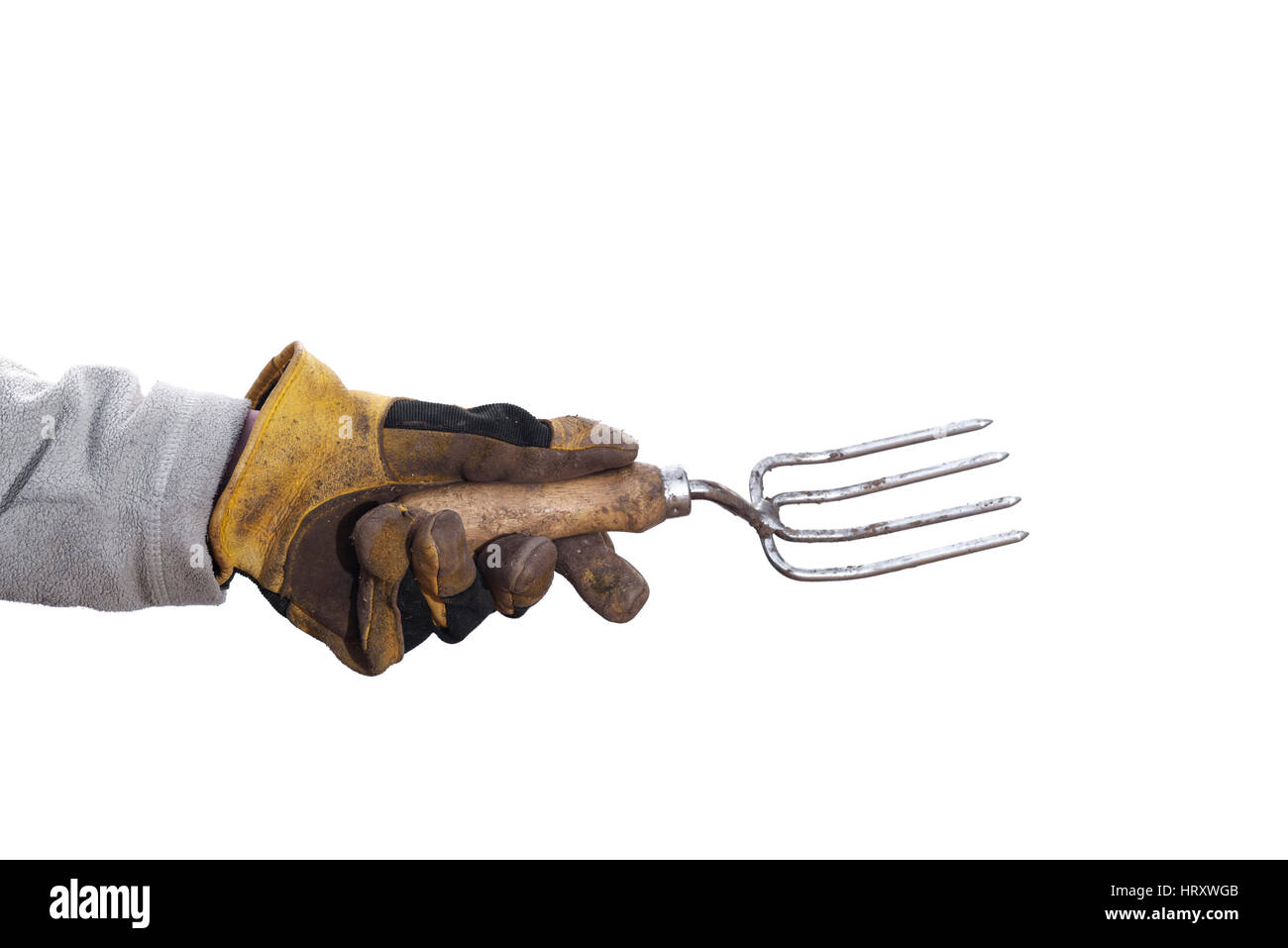 Gardener holding hand fork, against a white background. - Stock Image