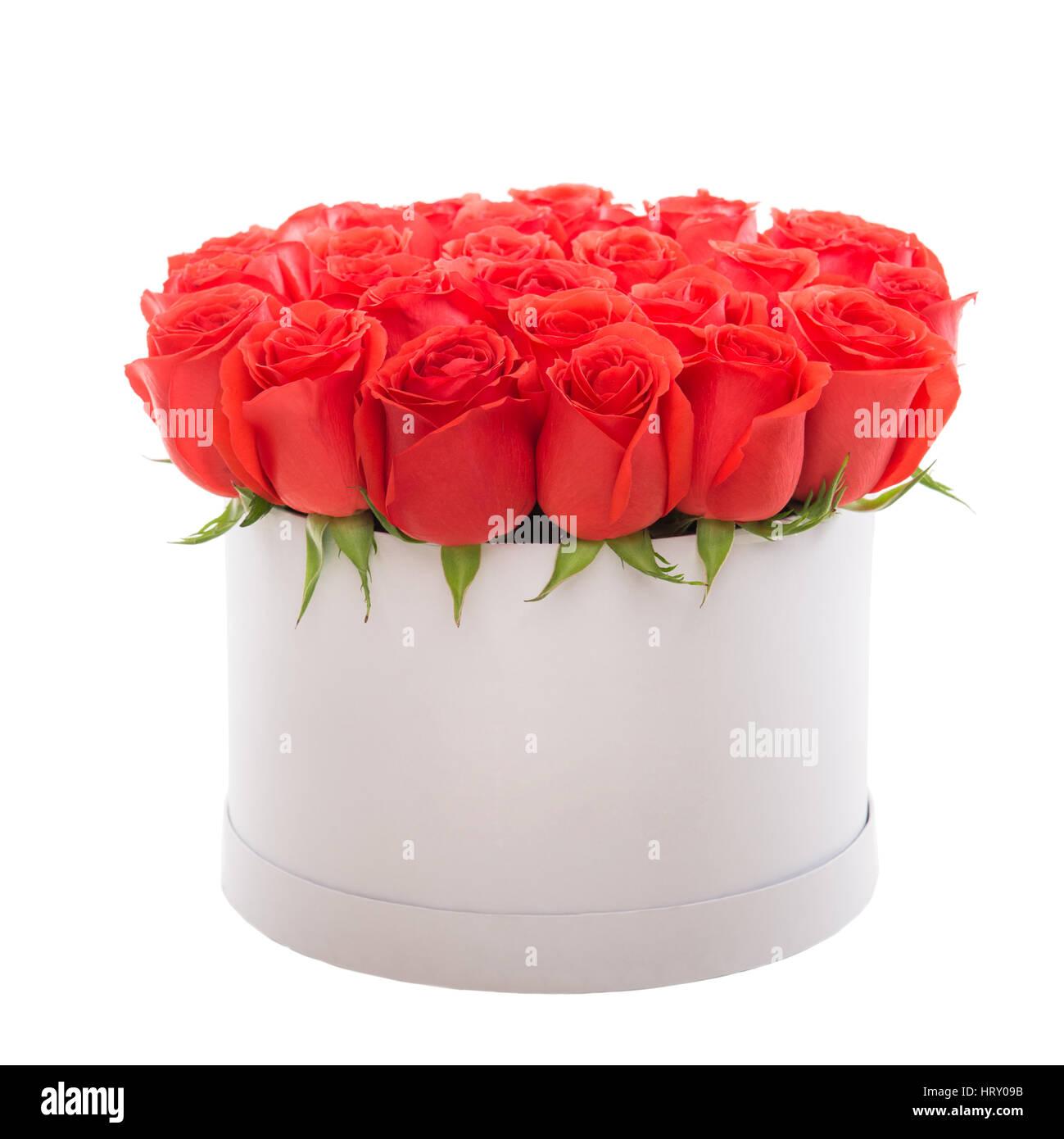 Red roses in white luxury present box flower box stock photo red roses in white luxury present box flower box mightylinksfo