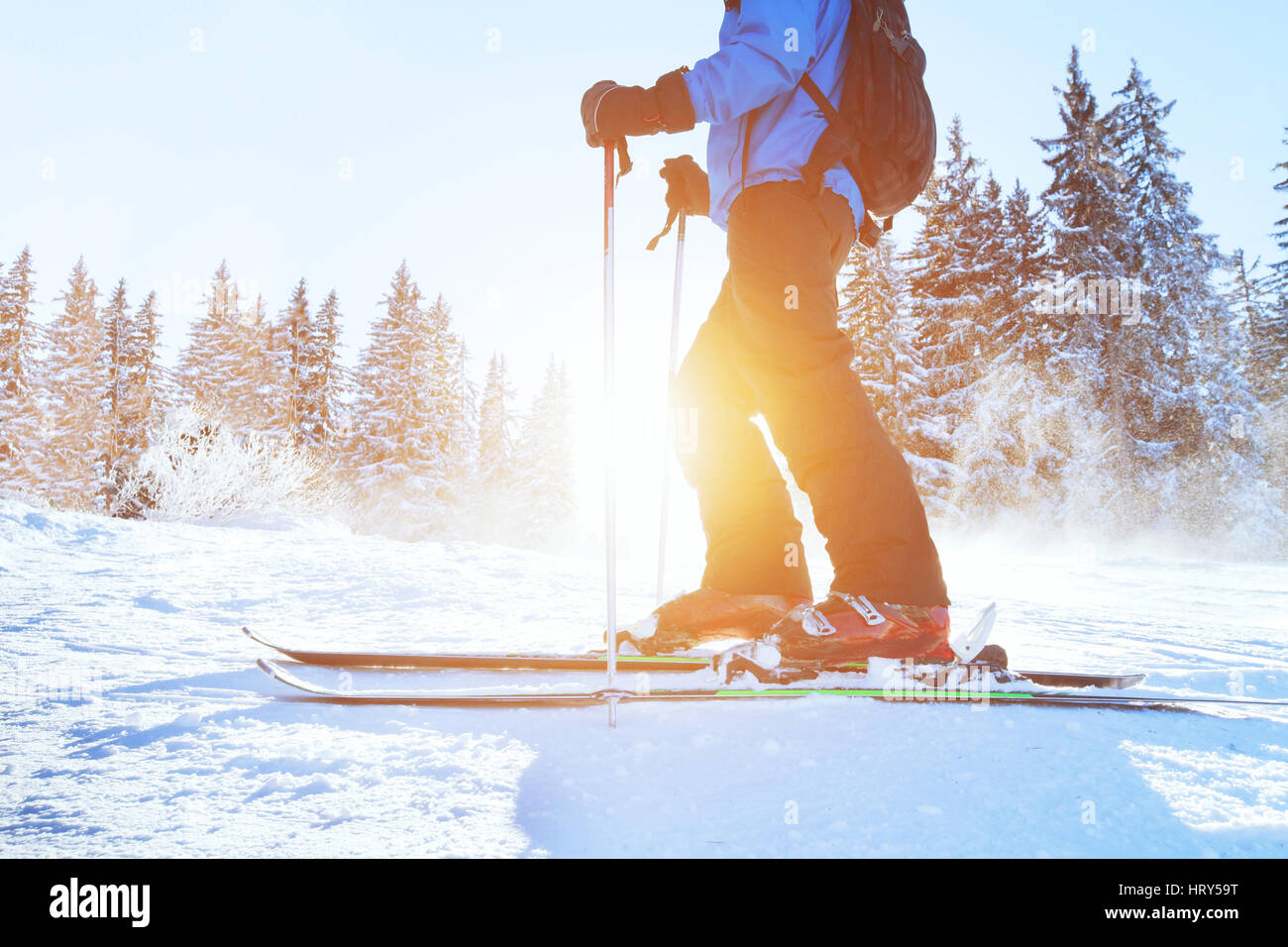 skiing downhill, skier in winter forest mountains, background - Stock Image