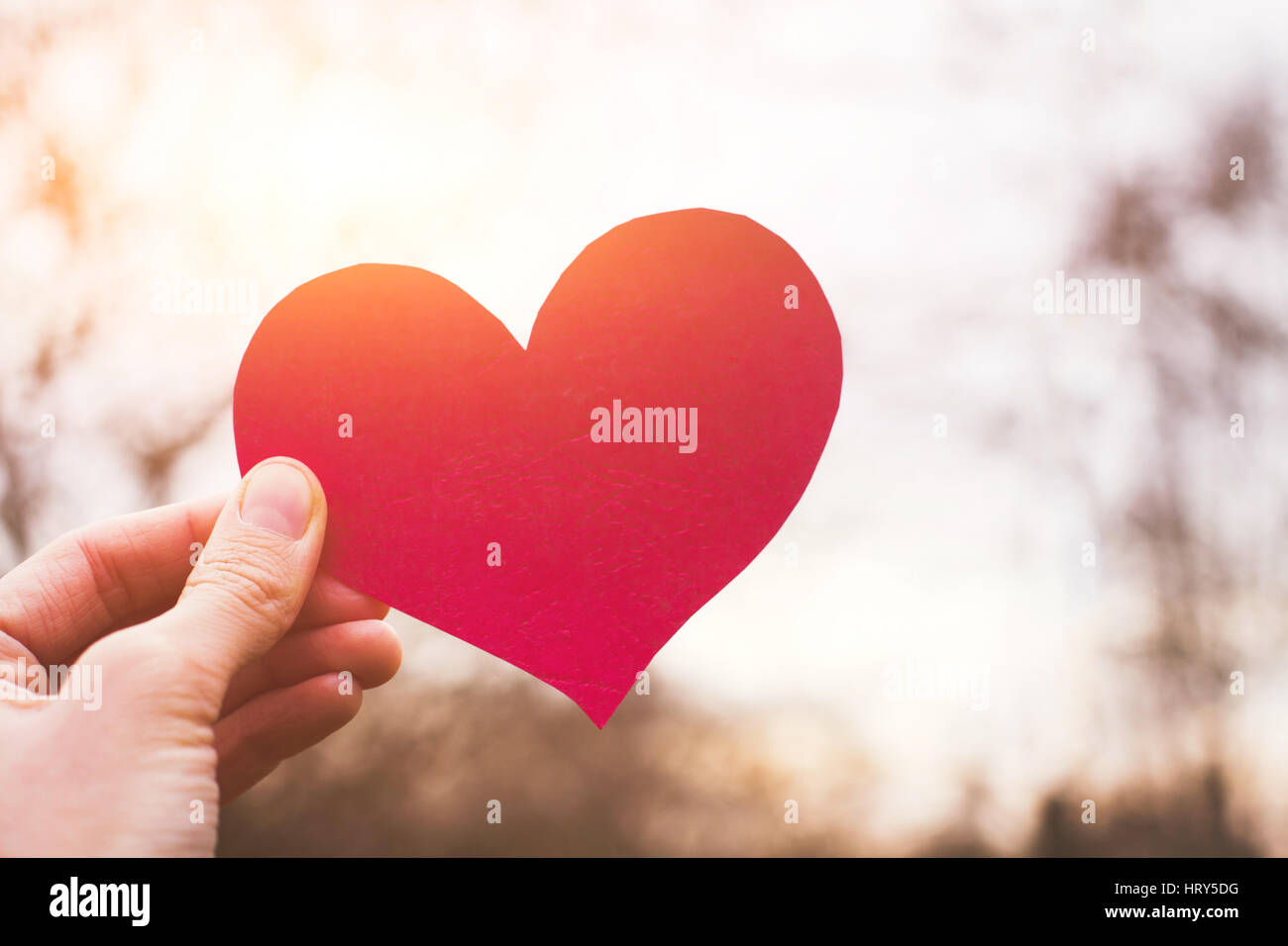 valentines day card, hand holding heart, love concept - Stock Image