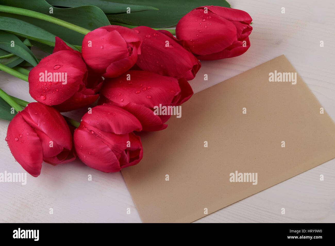 Red tulips and paper sheet - Stock Image
