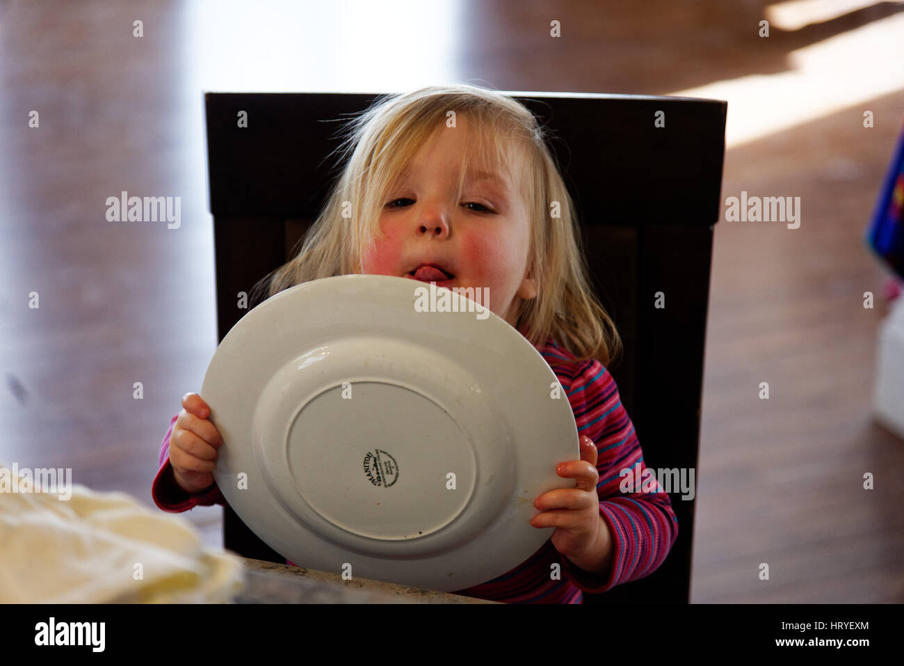 A little girl (2 yr old) licking her plate after dinner - Stock Image