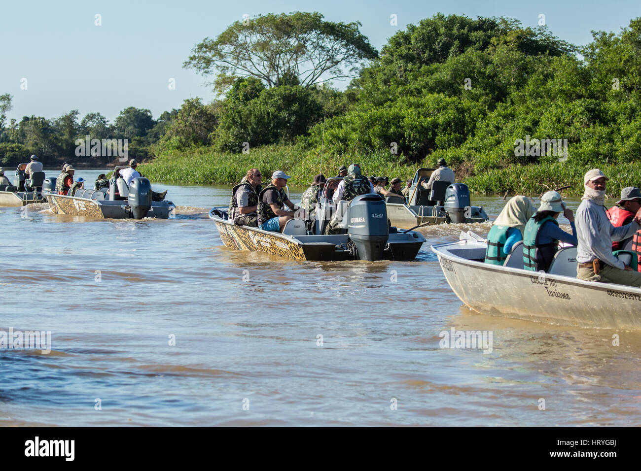 A group of boats full of tourists waiting for a jaguar on shore to get up from his rest and be active, in the Pantanal - Stock Image