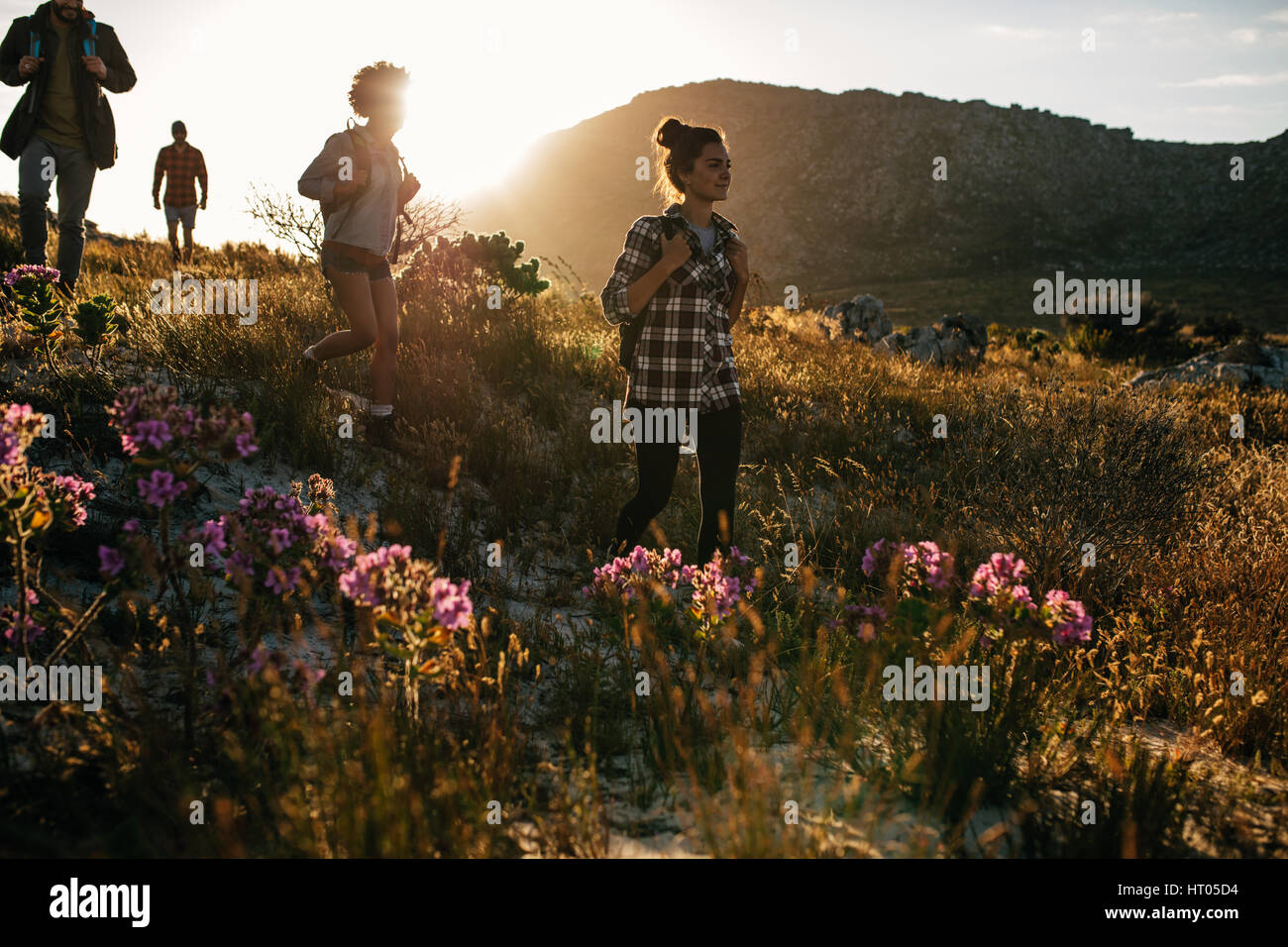 Group of friends are hiking in mountain on a sunny day. Four young people walking through countryside. - Stock Image
