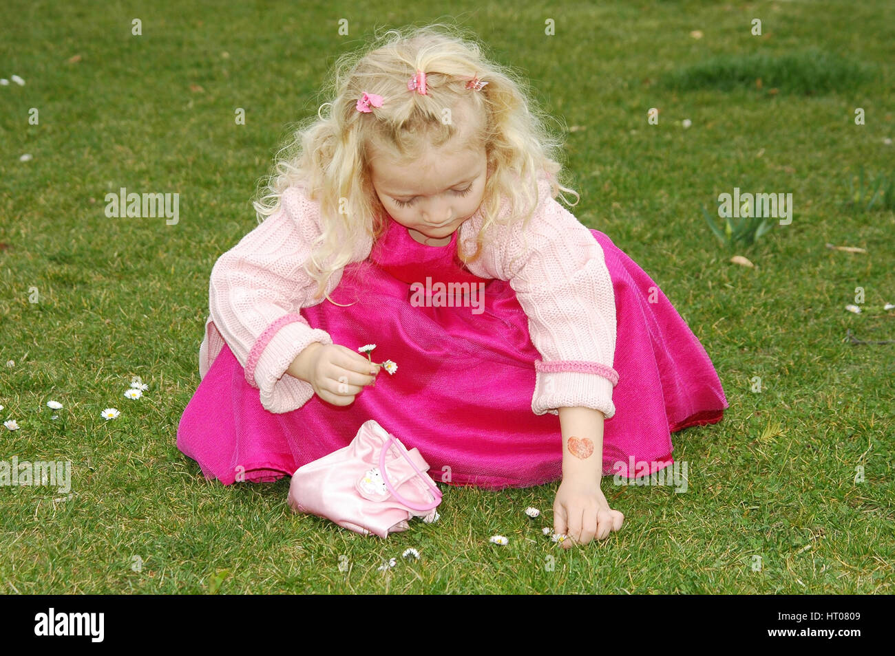 Maedchen pflueckt Gaensebluemchen in der Wiese - girl plucks daisies in meadow Stock Photo