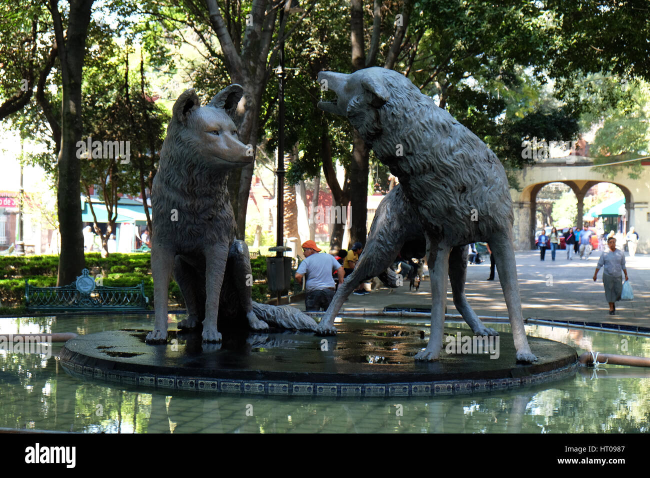The Coyotes Fountain located at the Jardin Centenario of Coyoacan, Mexico City - Stock Image