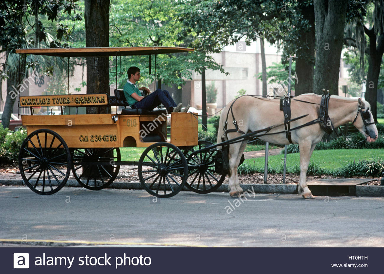 Savannah Georgia Horse Carriage Stock Photos Savannah Georgia
