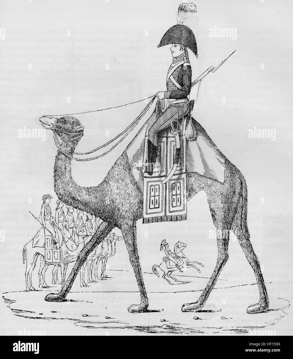 French Domedary Regiment. Captured with a Convoy in the Lybian Desert, May, 1801, (1884). Artist: Unknown - Stock Image