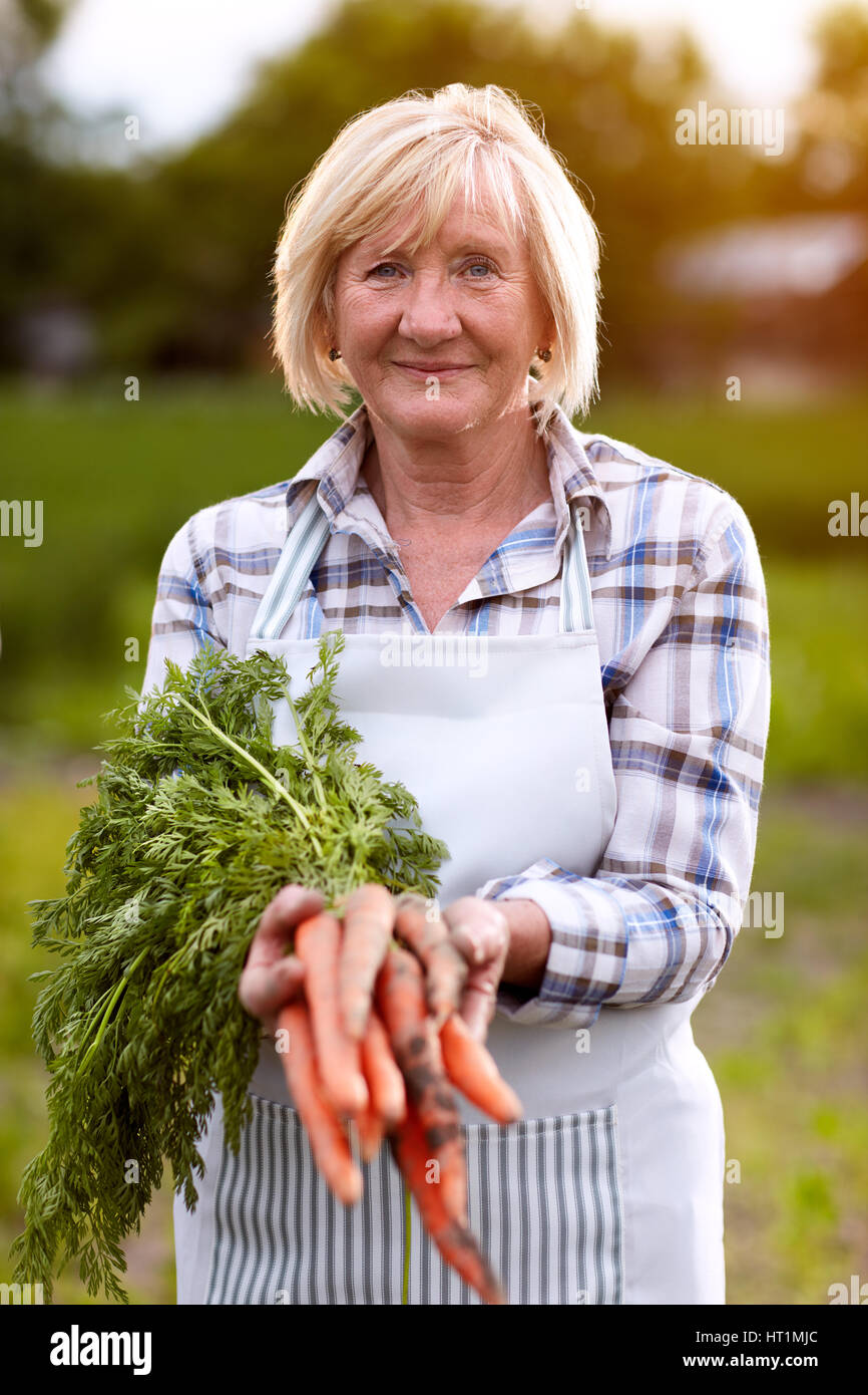Older woman showing domestic grown carrots in garden Stock Photo