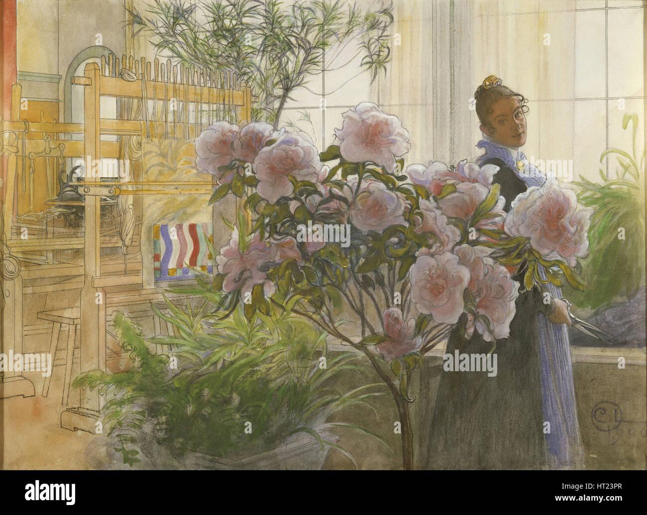 Azalea, 1906. Artist: Larsson, Carl (1853-1919) - Stock Image