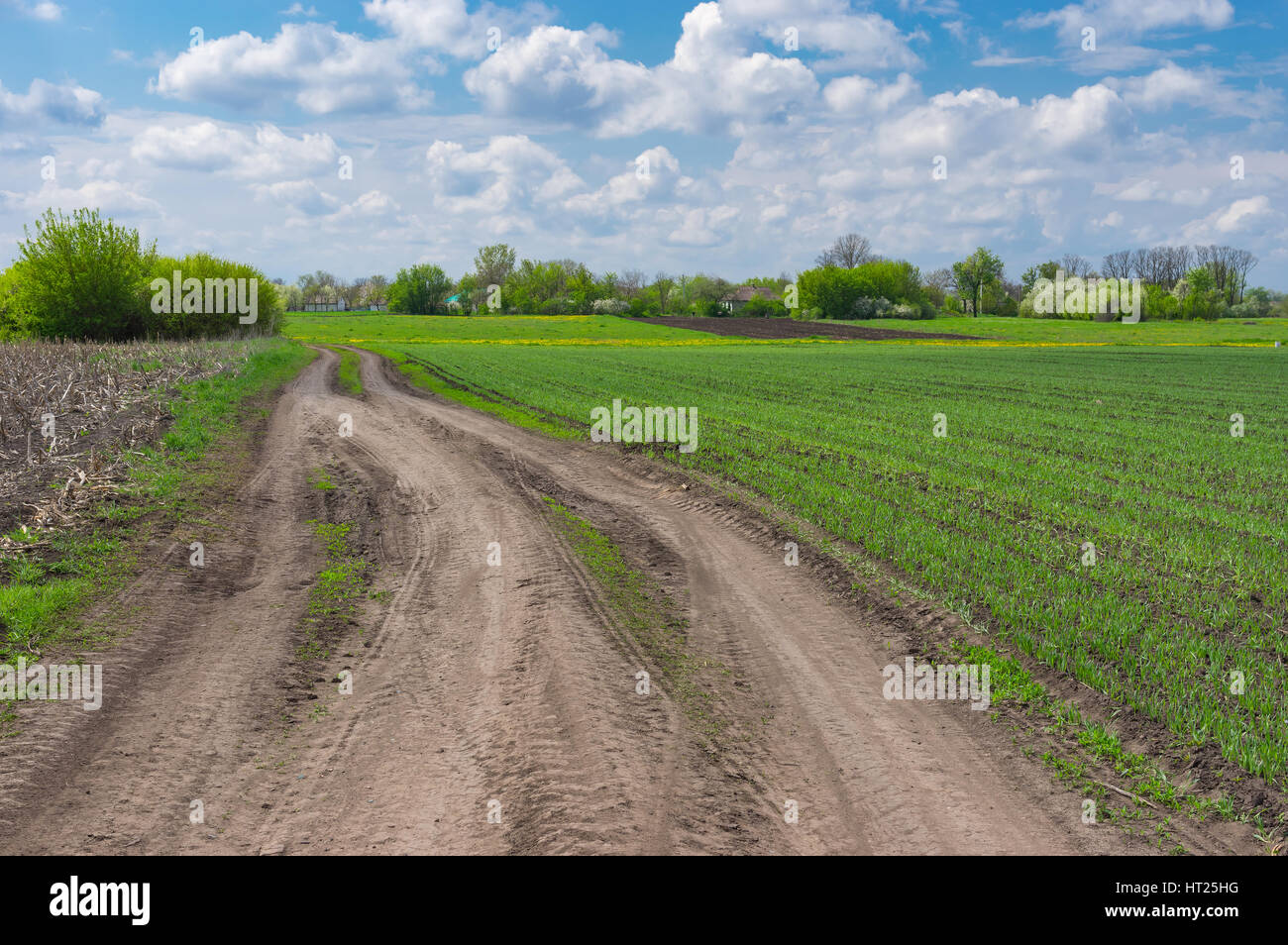 Spring landscape with an earth road near agricultural field in Dmukhailivka village, Dnipropetrovsk oblast, Ukraine - Stock Image