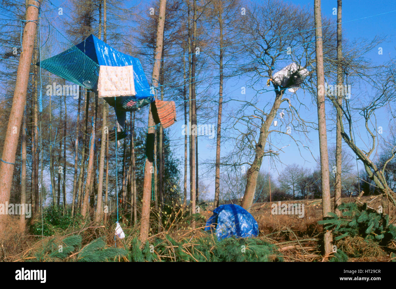 Newbury ByPass constuction protestors. Artist: Unknown. - Stock Image
