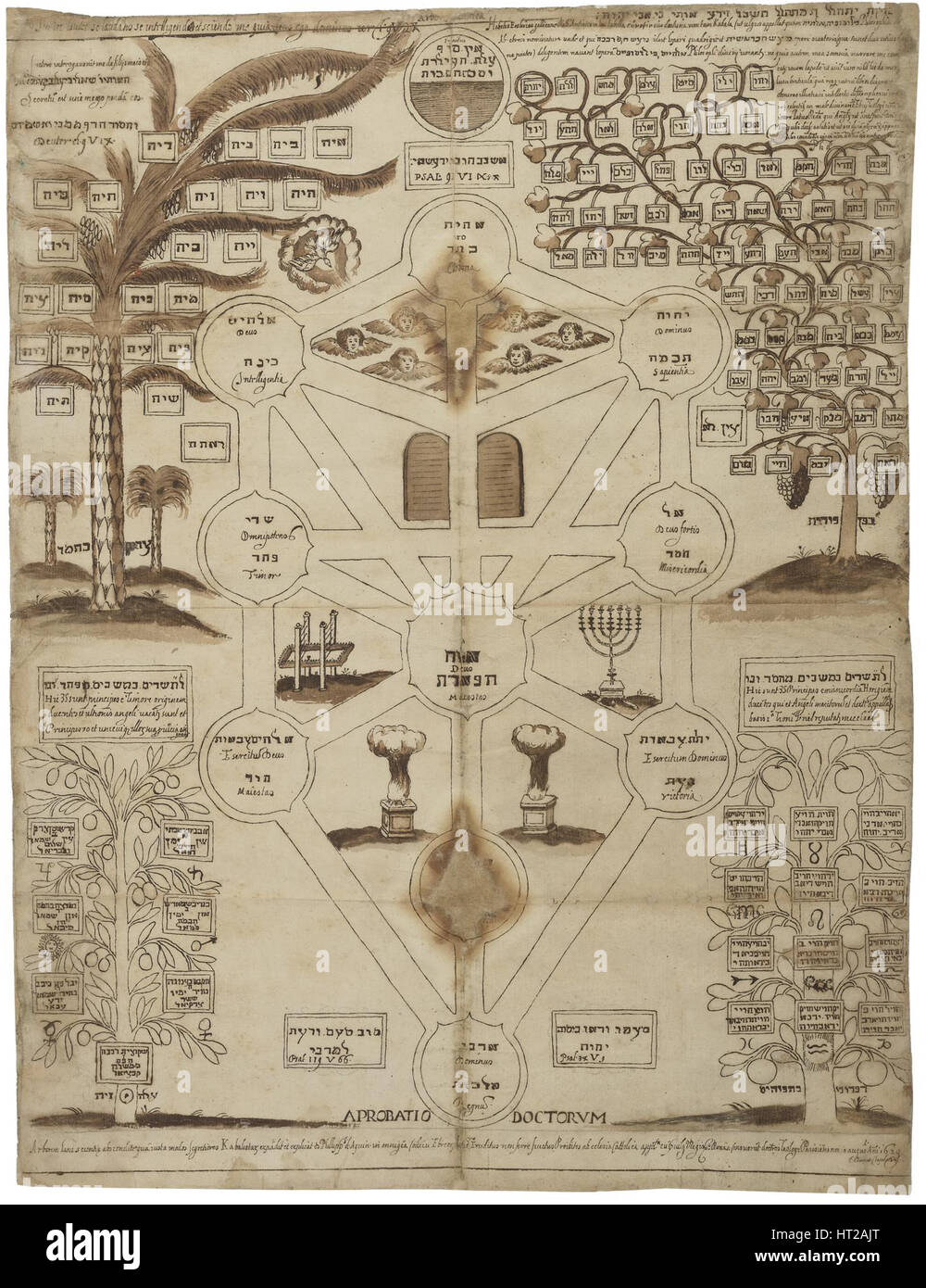 Tree Of Life Kabbalah Stock Photos & Tree Of Life Kabbalah Stock
