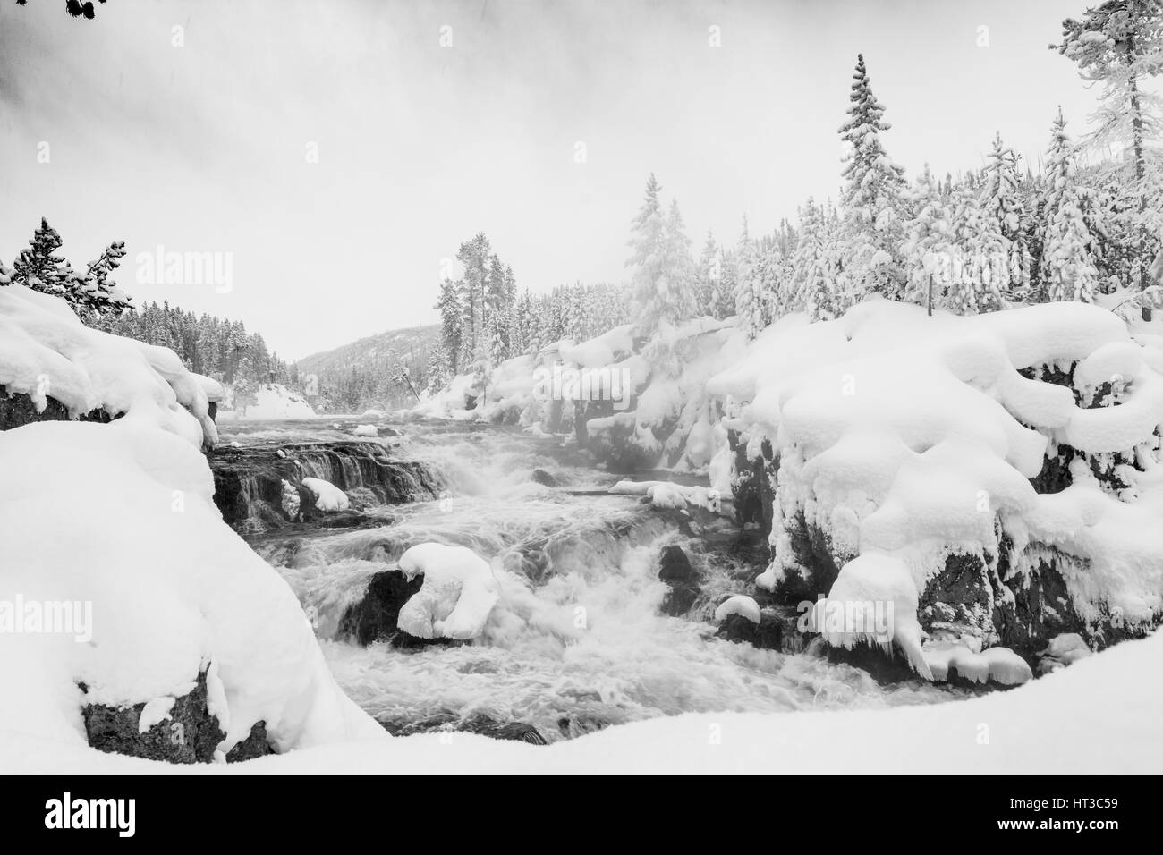 Beautiful snowy scenic landscape of a flowing river in Yellowstone National Park with snowy trees, rocks, and rapids. - Stock Image