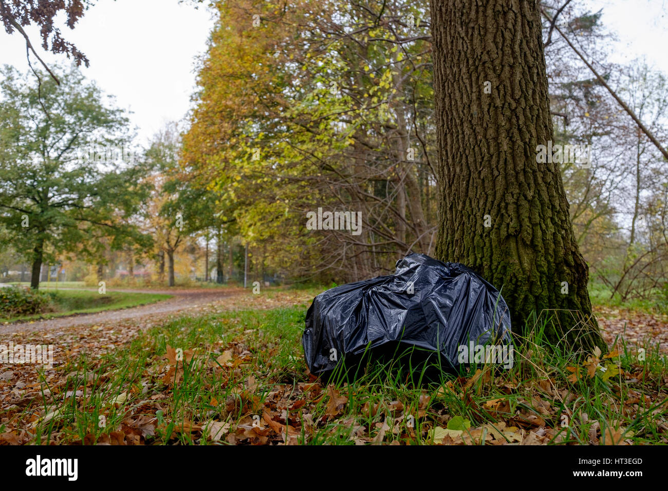 Illegal dumping in the nature garbage bag left in the nature - Stock Image