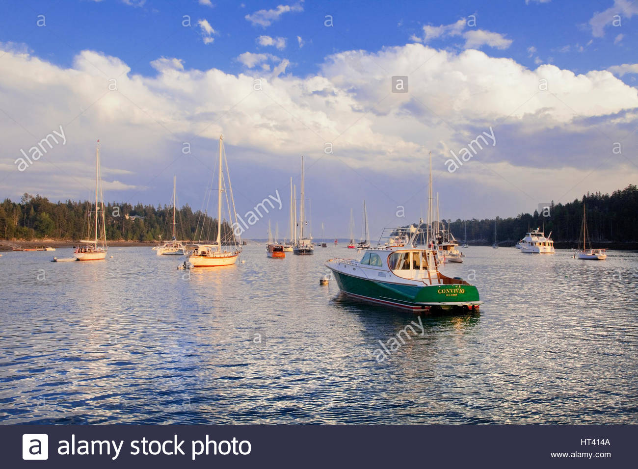0902-1010   Moored boats in Northeast Harbor, Maine. - Stock Image