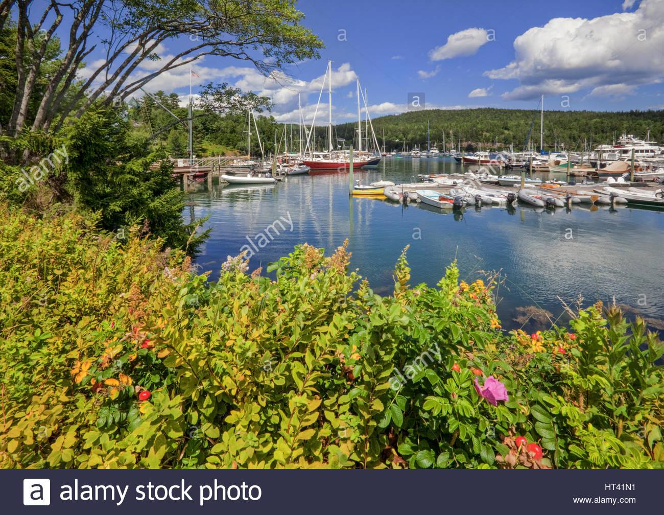 0902-1015  The inner harbor at Northeast Harbor, Mt. Desert Island, Maine.  Acadia National Park. - Stock Image