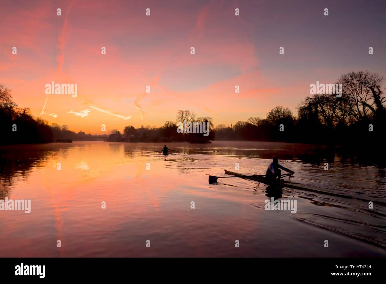 Sculling at sunrise - Stock Image