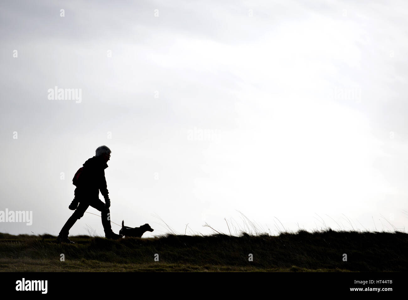 Silhouette of a woman walking a dog on a cloudy day - Stock Image