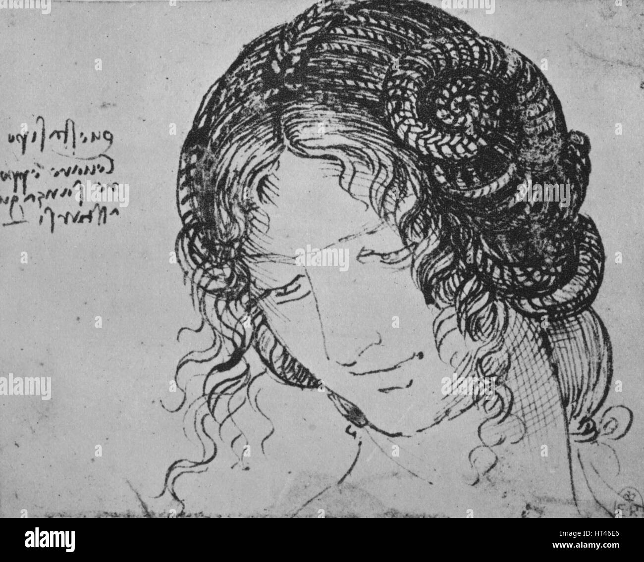 Study Of A Woman S Braided Hair C1480 1945 Artist Leonardo Da