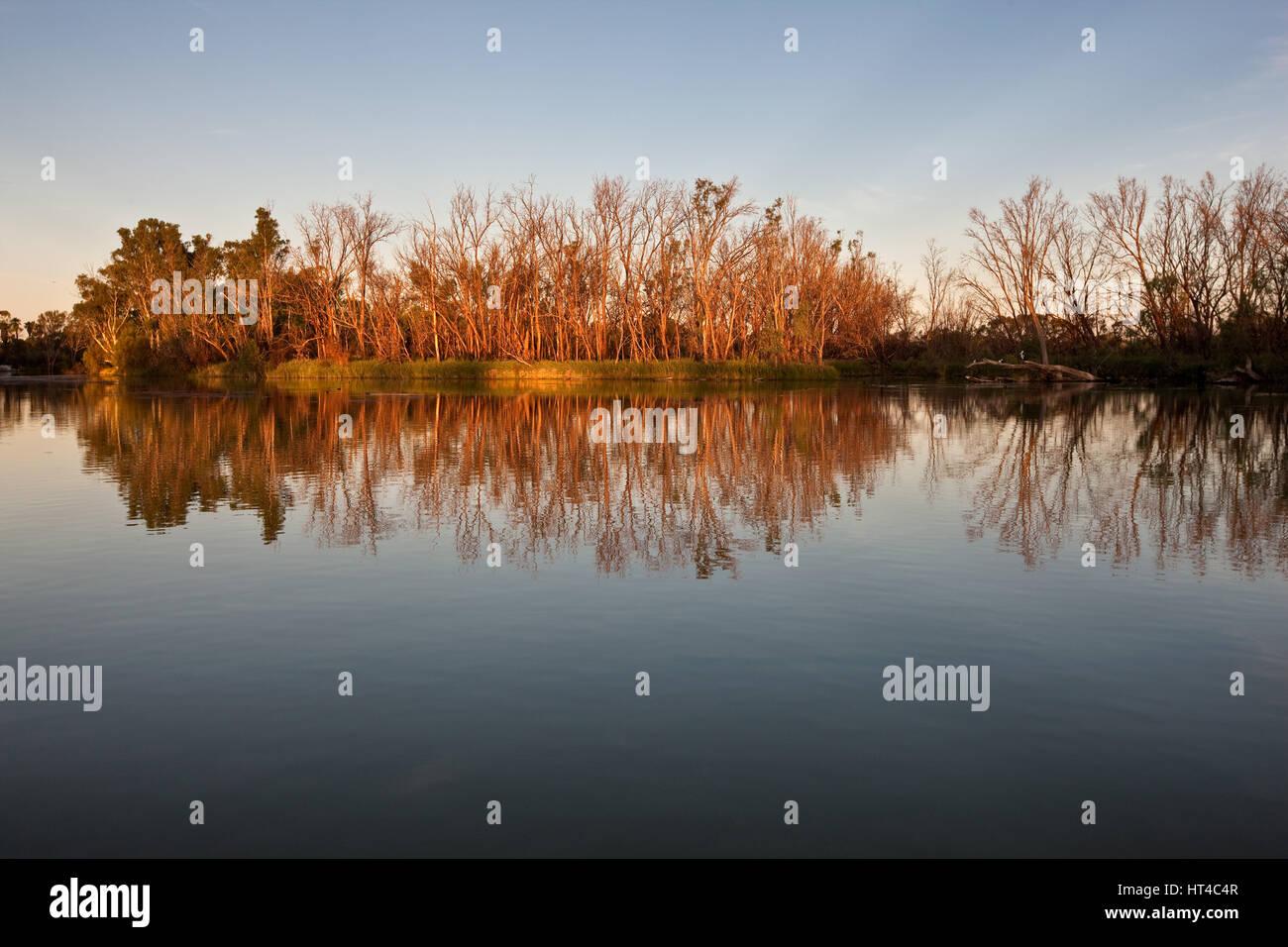 Late afternoon on the Murray River, near Mildura, Australia. - Stock Image