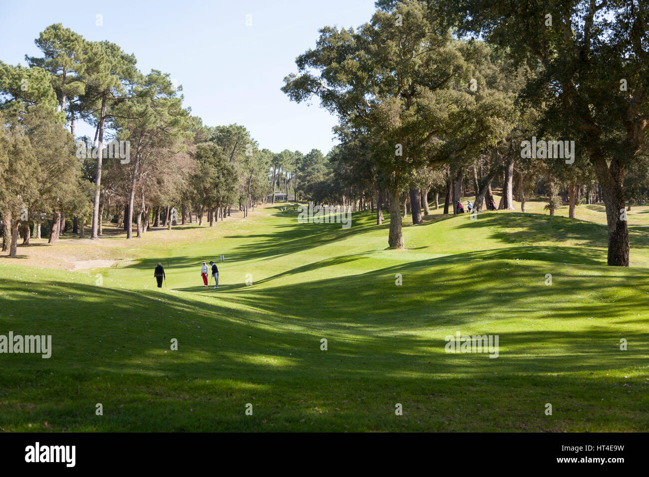 The 18 hole par 72 golf course of Seignosse (Landes - France). Hilly and constructed with lake and pond hazards, - Stock Image