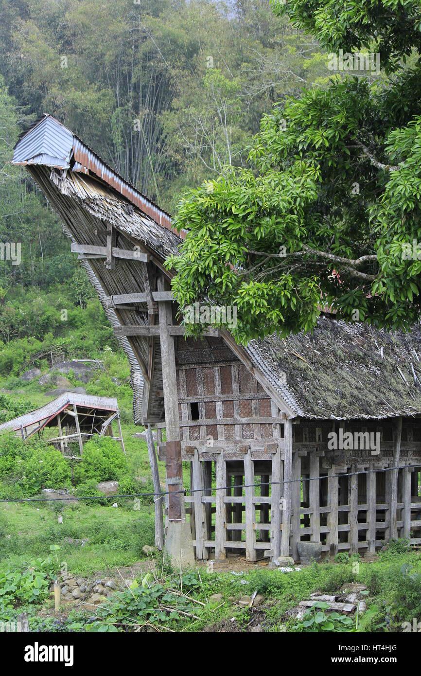 TONGKONAN is a traditional house from toraja - Stock Image