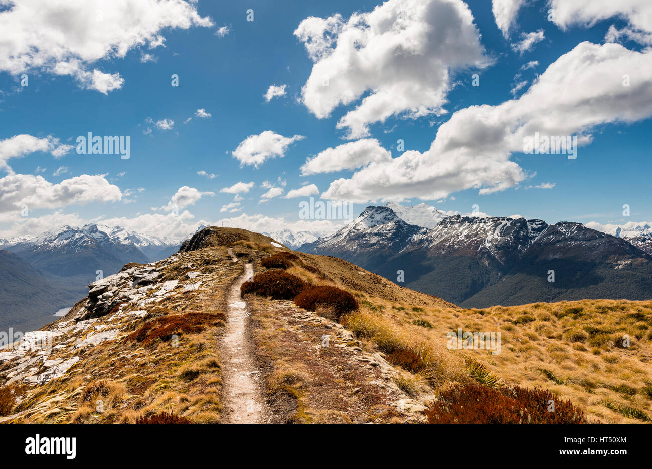 Hiking trail, Mount Alfred, Glenorchy at Queenstown, Southern Alps, Otago, Southland, New Zealand - Stock Image
