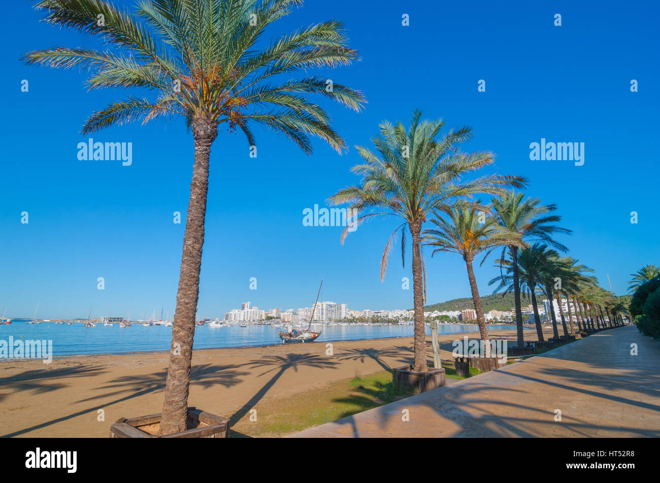 Mid morning sun, along beach near the city, sees an abandoned sailboat.  Rows of palm trees line the beach, sunny - Stock Image