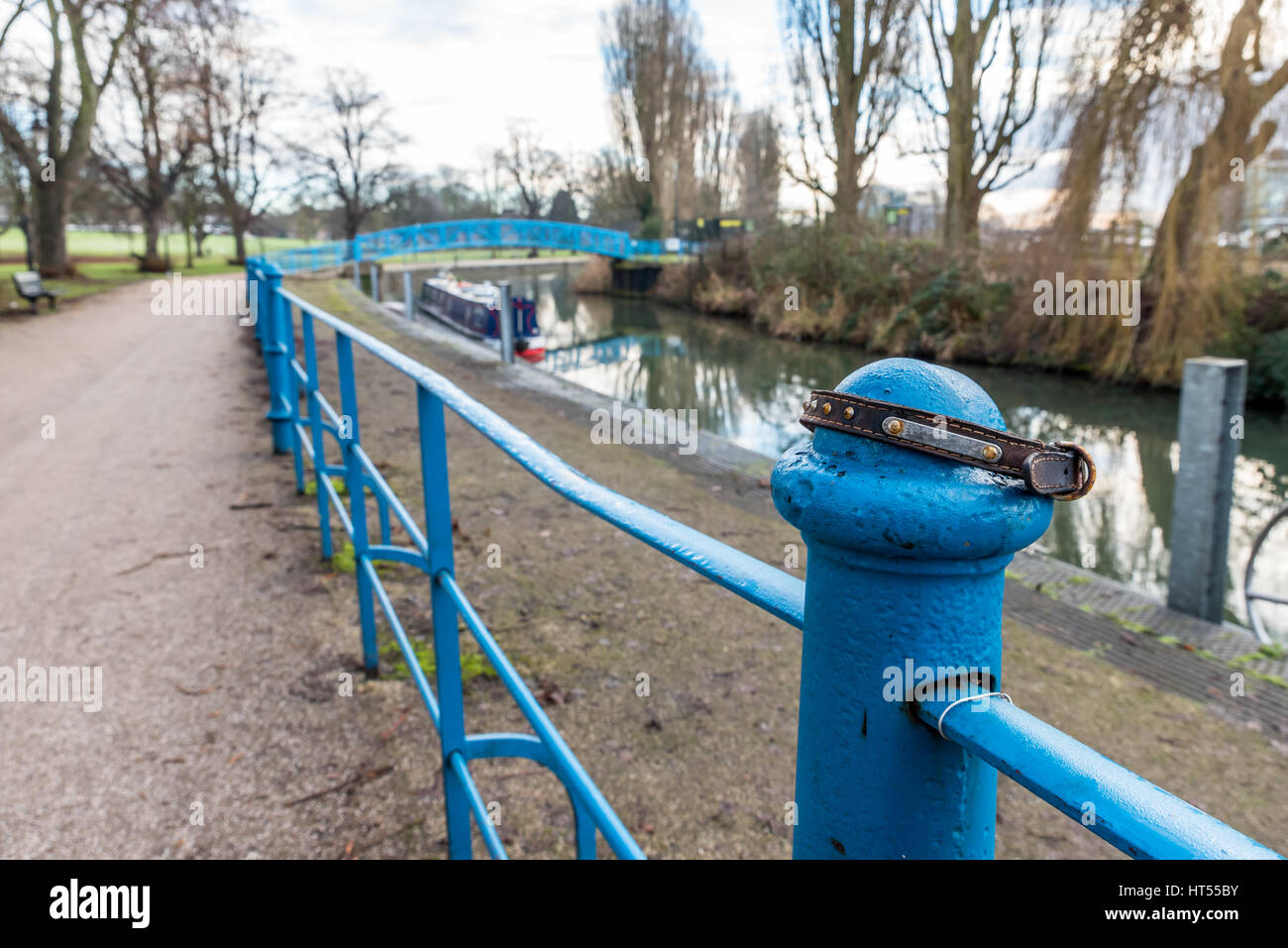 Doggie collar on railing along Nene river in Northampton UK. - Stock Image