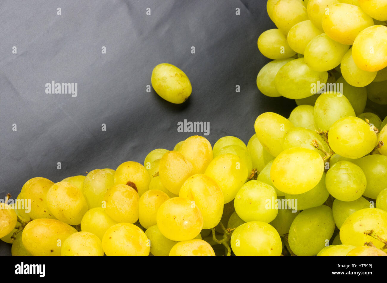 Grape Cluster Coloring Page. grapevine coloring sheet several pages ...