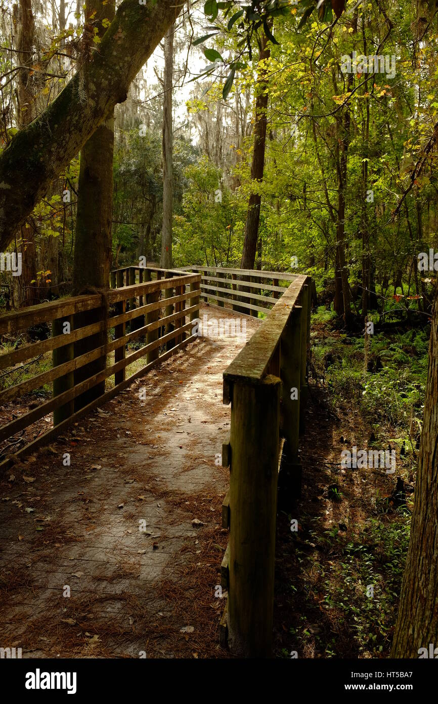 This wooden footbridge is part of a a meandering footpath that follows along the quiet waters of the enchanting - Stock Image