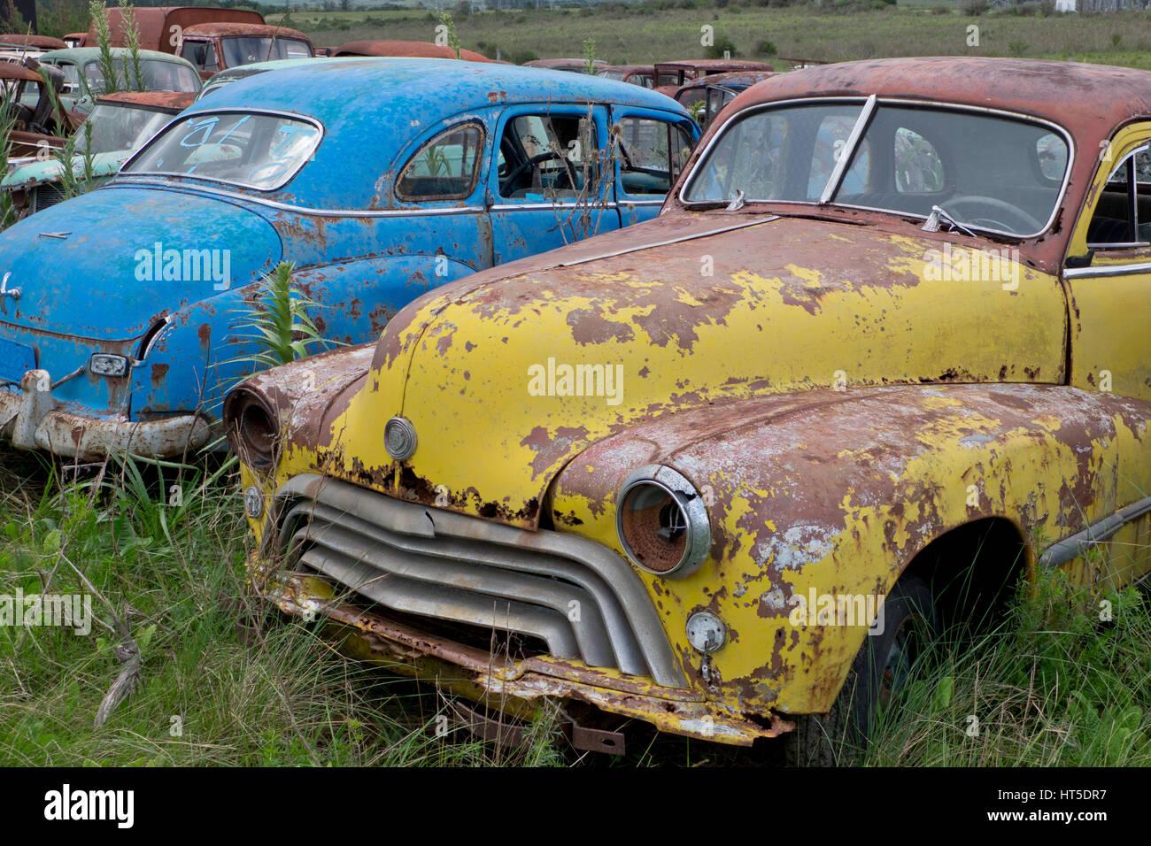 Old classic cars scrapyard in Rocha, Uruguay Stock Photo: 135344923 ...
