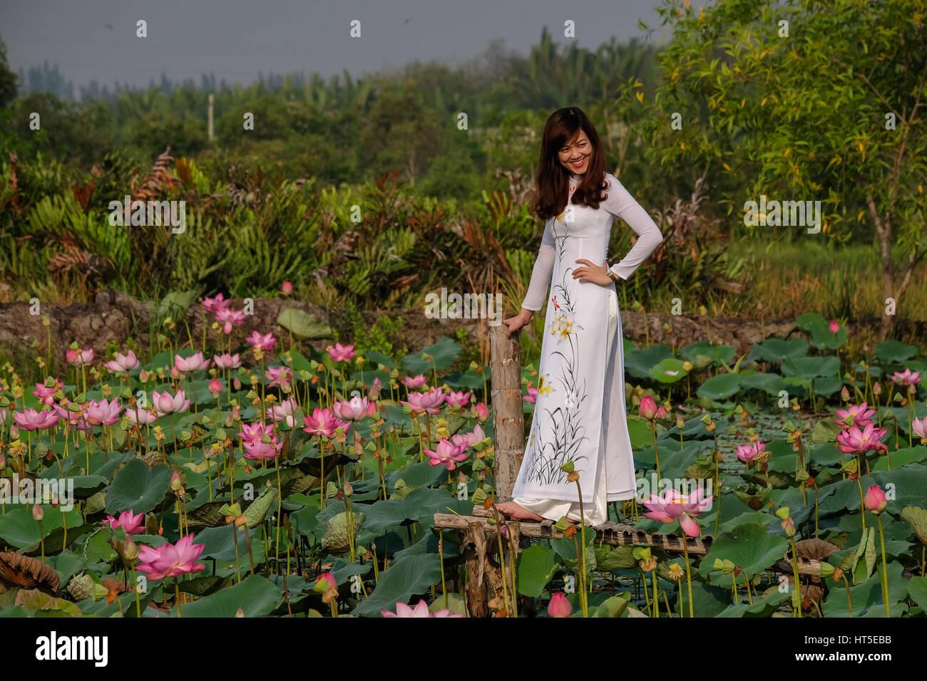 Vietnamese Lotus Flowers Stock Photos & Vietnamese Lotus Flowers ...