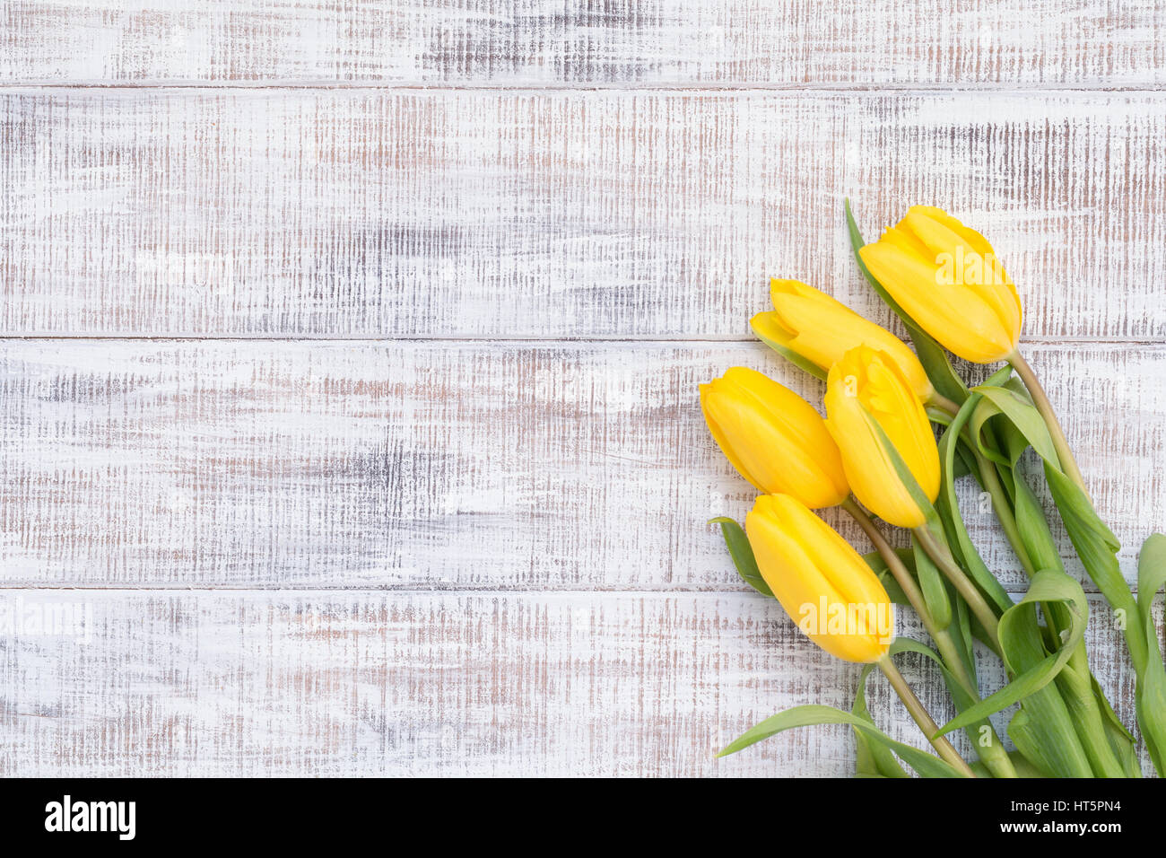 floral card floral background five yellow tulips on
