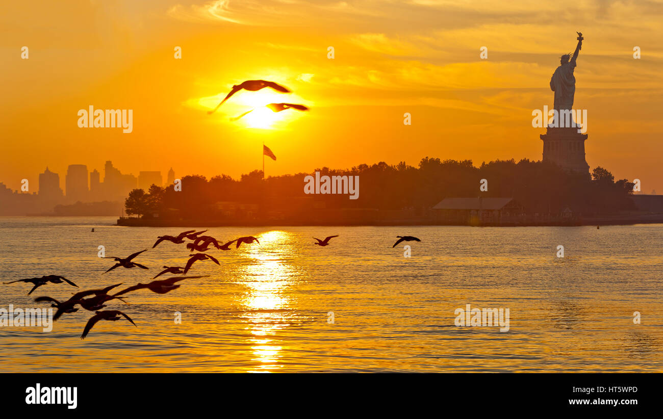 Sunrise and the Statue of Liberty and a flock of birds flying and New York City. - Stock Image
