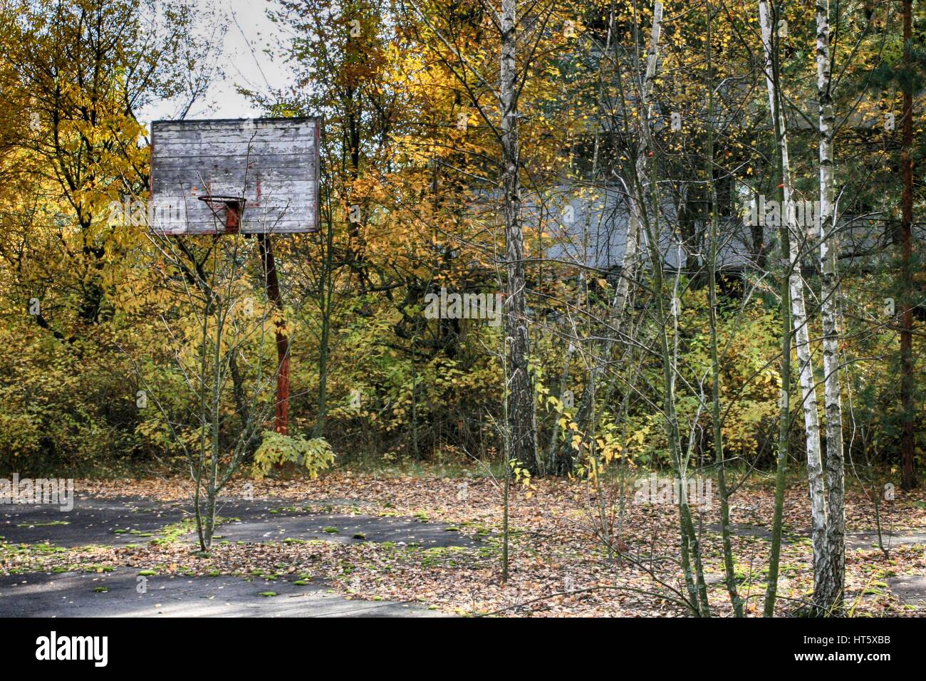 Chernobyl, Pripyat – abandoned building taken over by vegetation after nuclear disaster - Stock Image