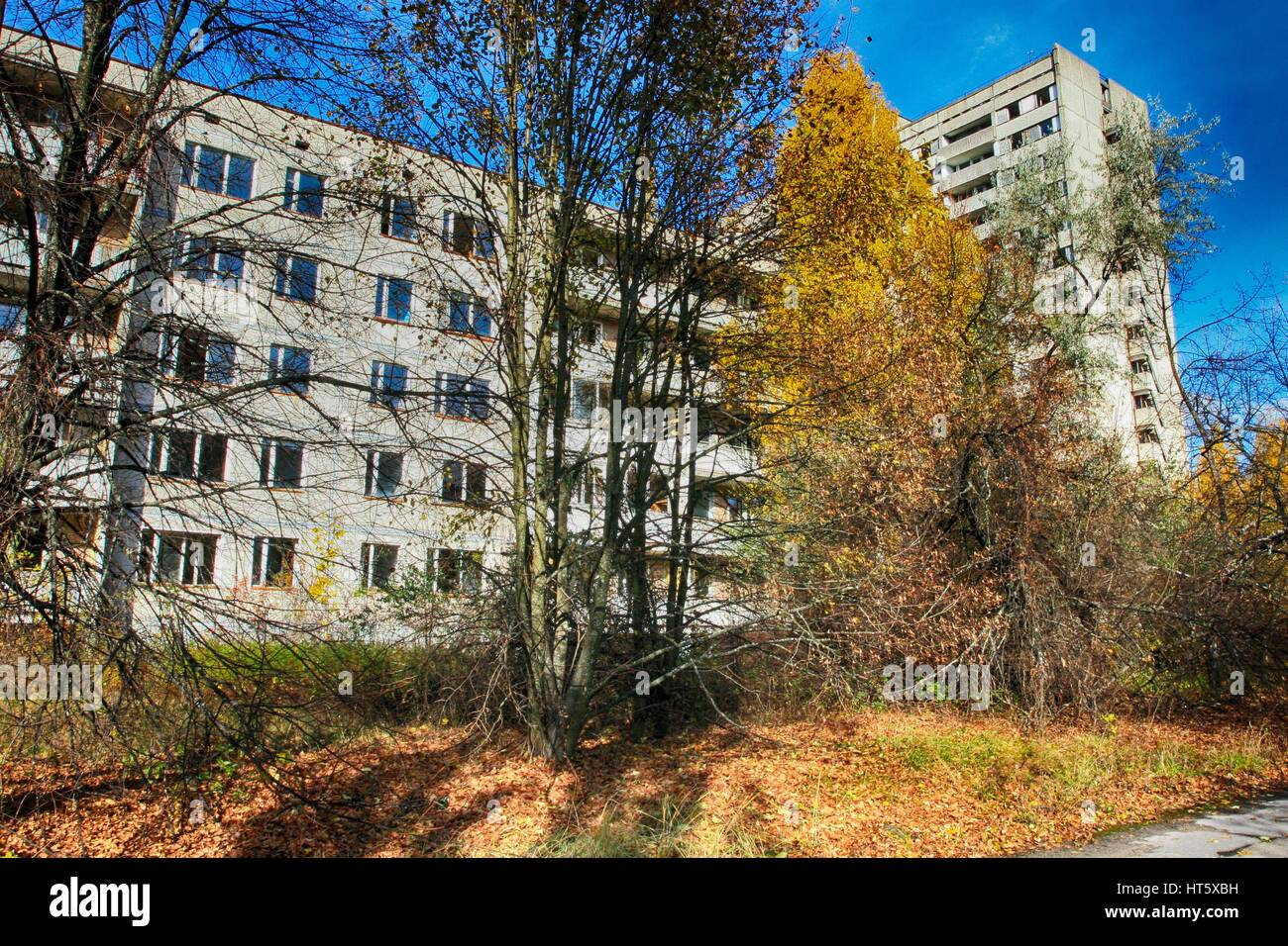 Pripyat – abandoned building taken over by vegetation after Chernobyl disaster - Stock Image