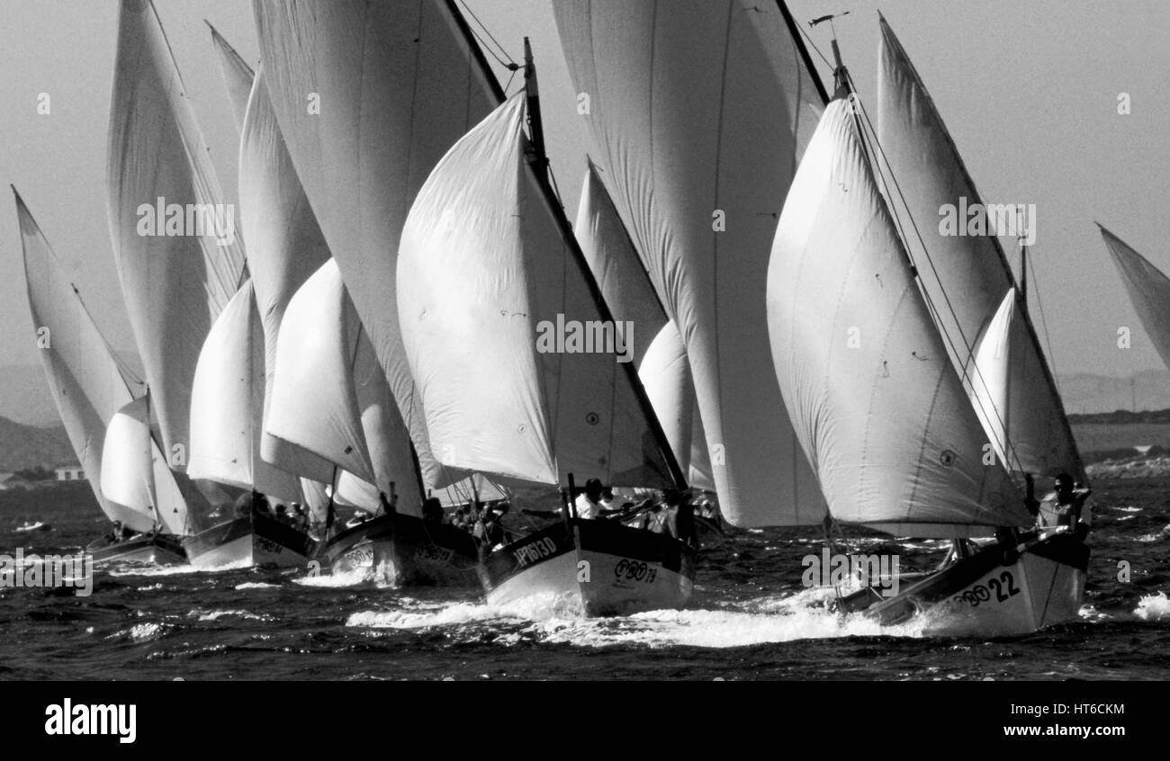 Latin sailing regatta in Sardinia - Stock Image