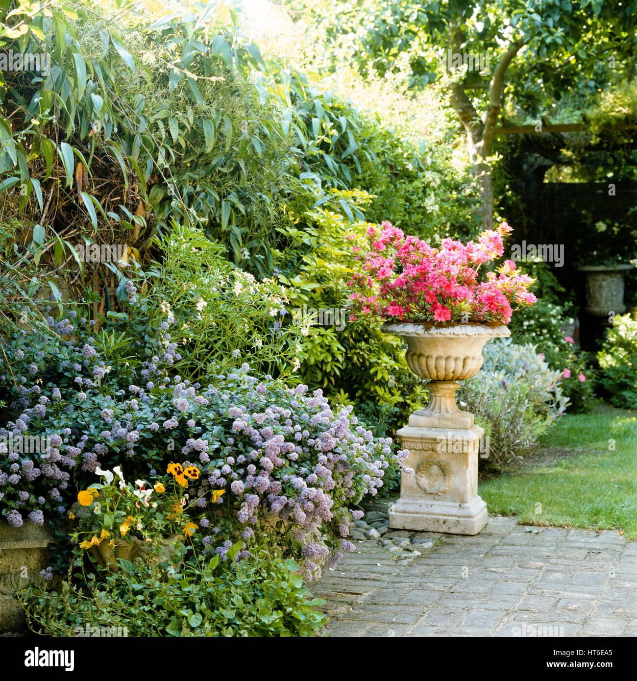 Garden. - Stock Image