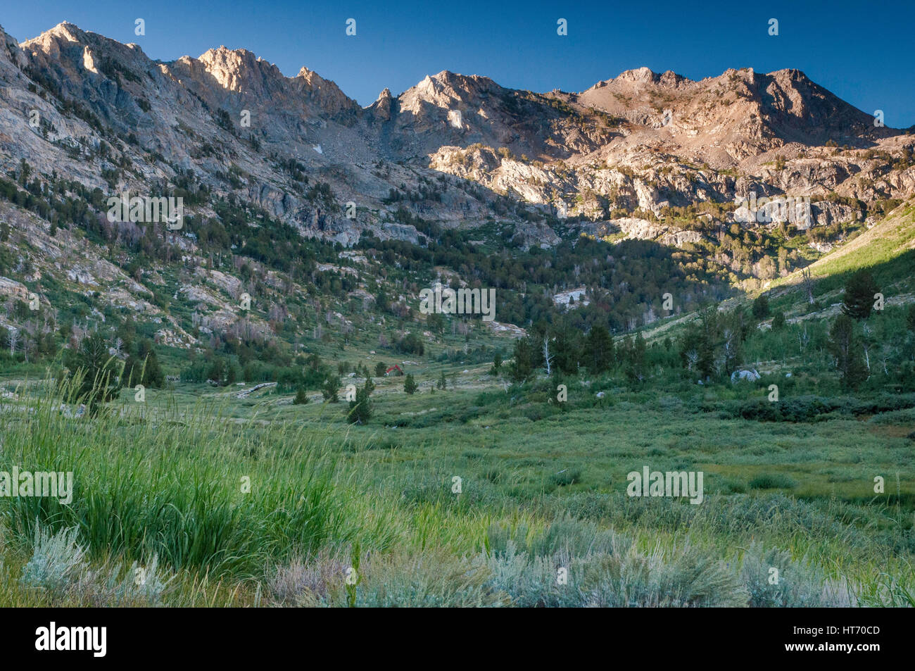 lamoille canyon in ruby mountains, near elko, nevada, usa stock