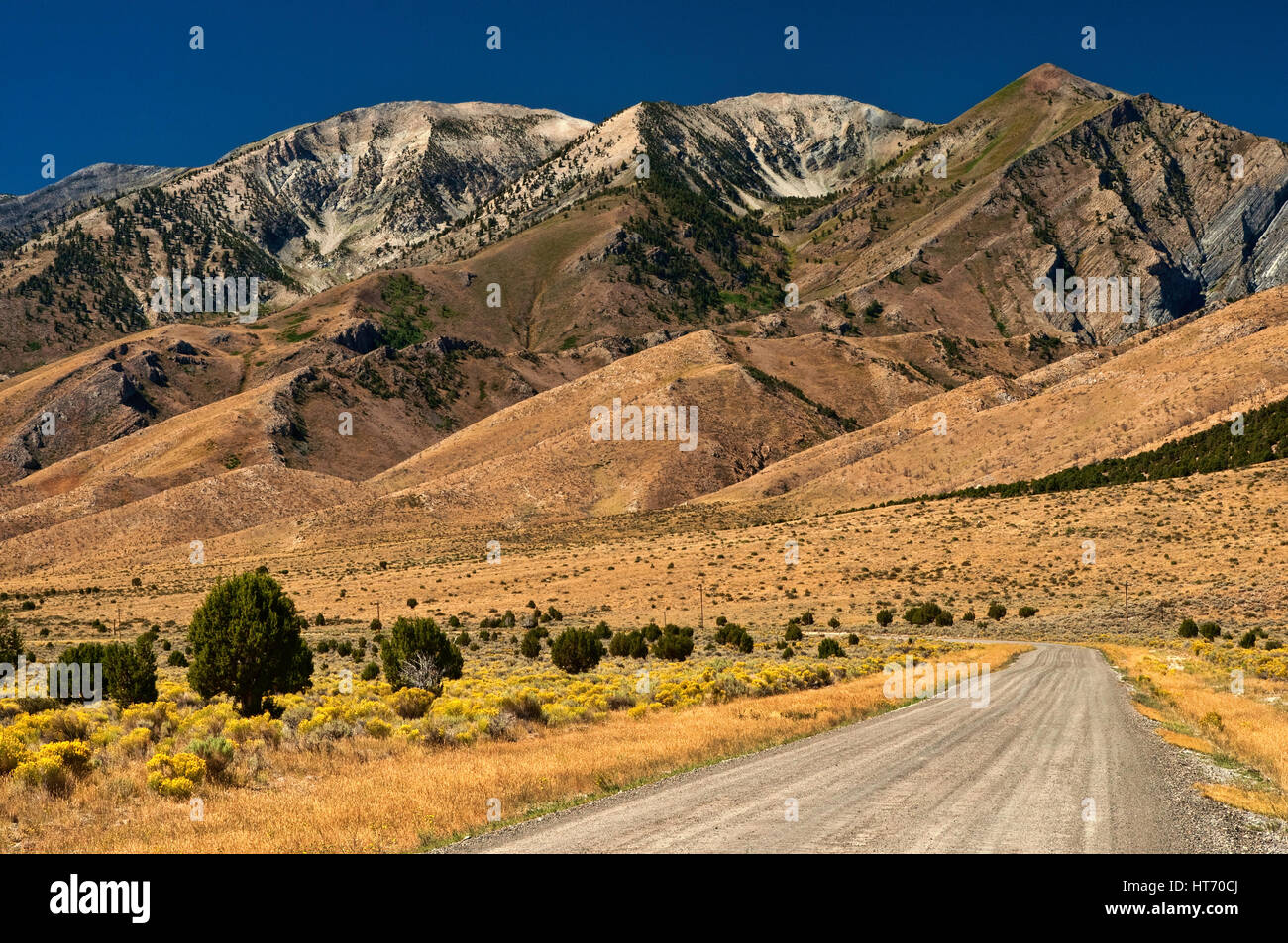 Ruby Mountains from road in Ruby Valley, Great Basin Desert, Nevada, USA - Stock Image