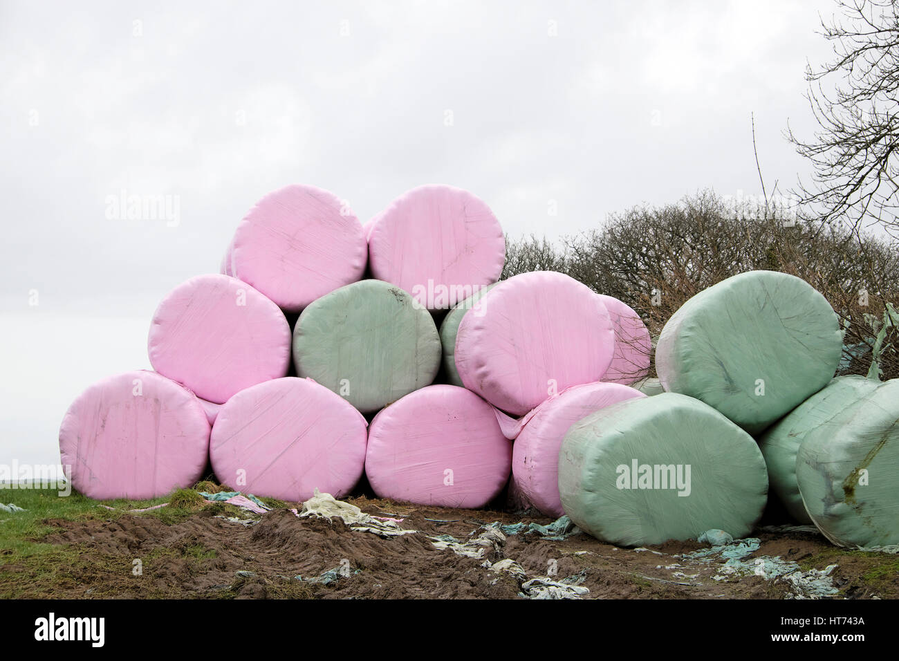 Bales Pink Stock Photos & Bales Pink Stock Images - Alamy