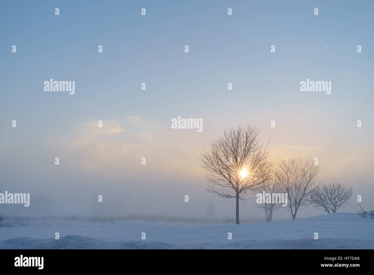Sun shining through the mist in a winter landscape. - Stock Image