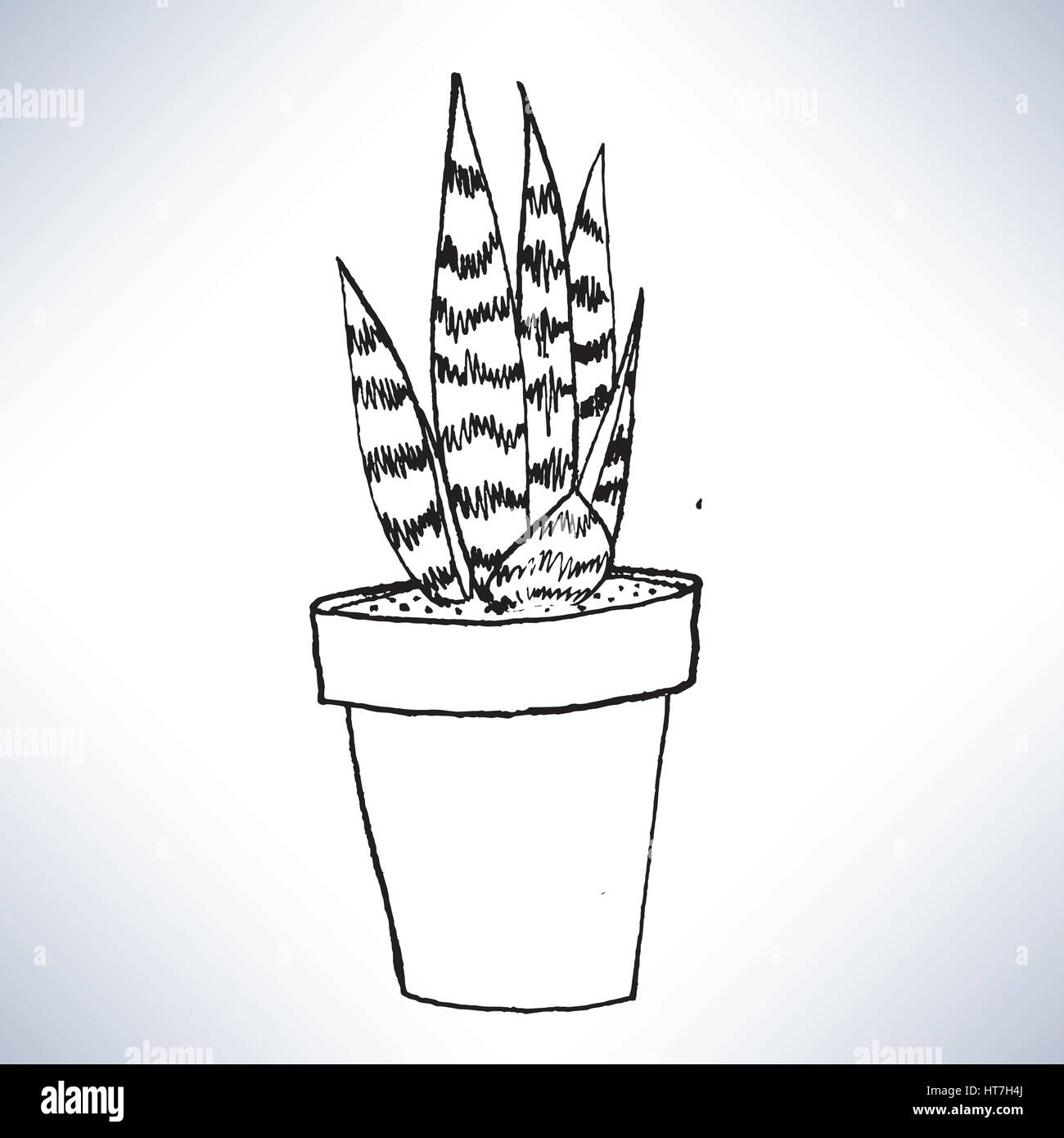 Isolated hand drawn lineart a potted plant - Stock Image