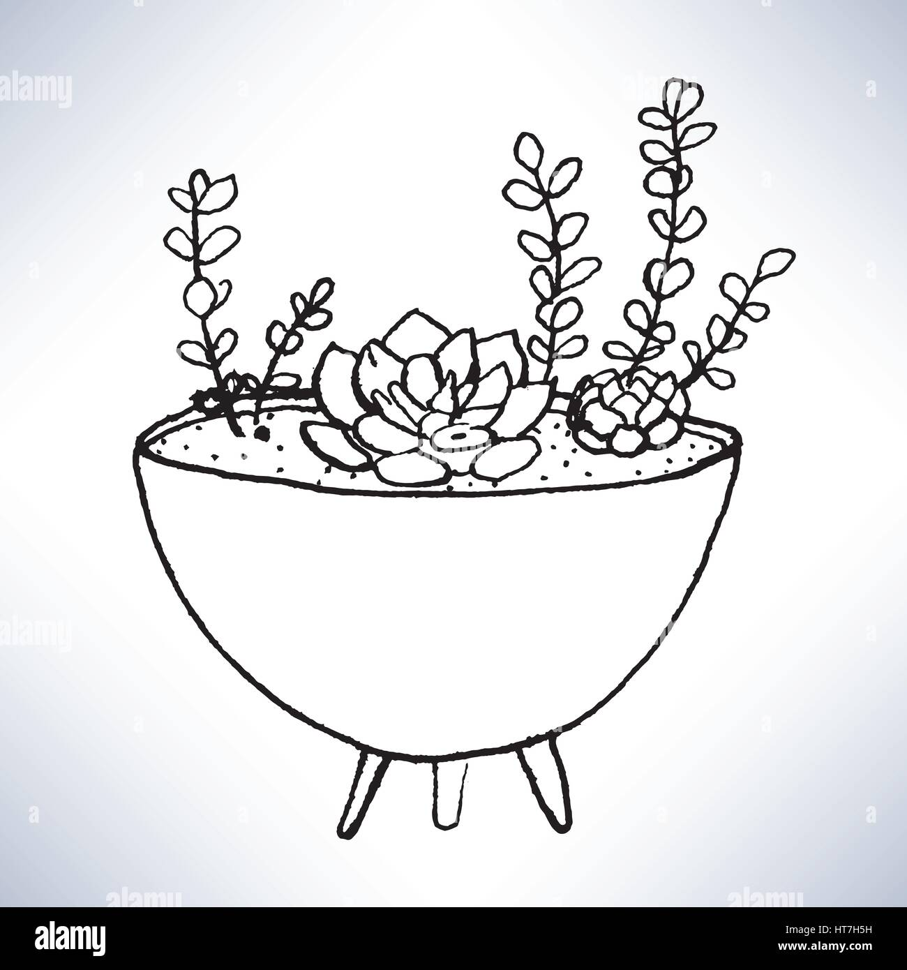 Isolated hand drawn lineart potted plants - Stock Image