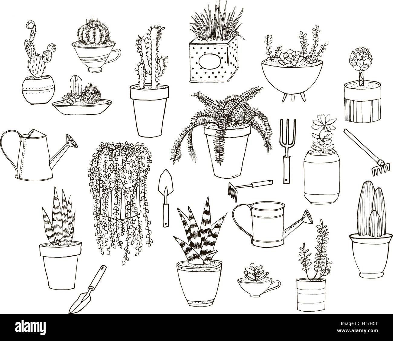 Set of hand drawn images with potted plants and tools. Clean line art suitable for repaining and coloring books. - Stock Image