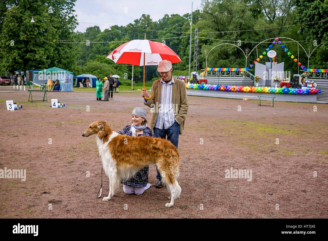 Couple With Russian Wolfhound Dog Under An Umbrella - Stock Image